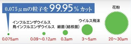 ryuushi.JPG